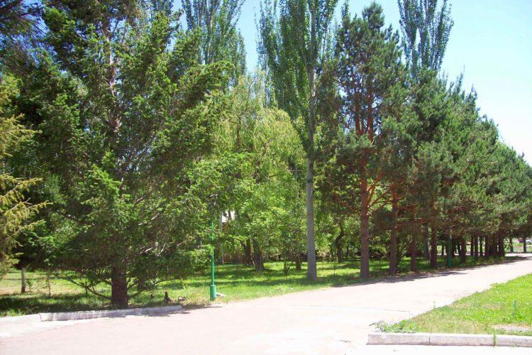 Ак-Бермет
