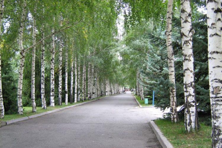 Киргизское Взморье